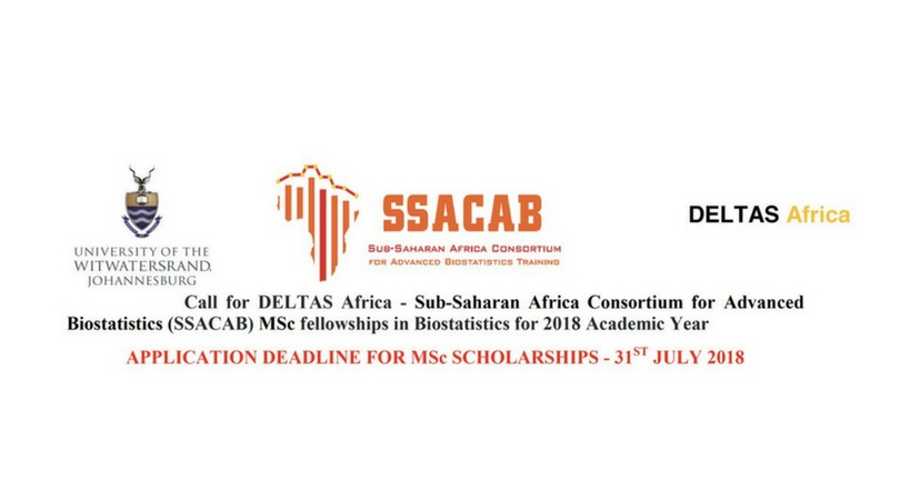 Apply: MSc Fellowships in Biostatistics at the Sub-Saharan Africa Consortium for Advanced Biostatistics (SSACAB) 2018