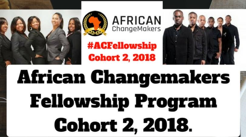 African Changemakers Fellowship Program 2018 (Cohort 2)