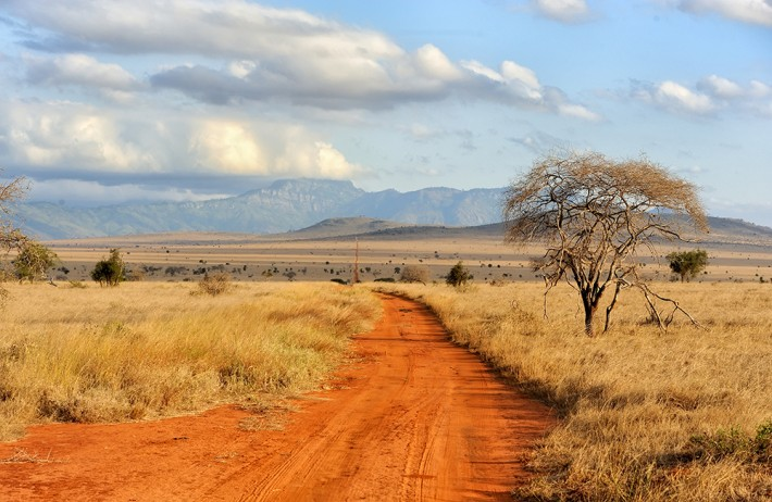 BES Ecologists in Africa Grant Program 2018 (Up to £8,000)