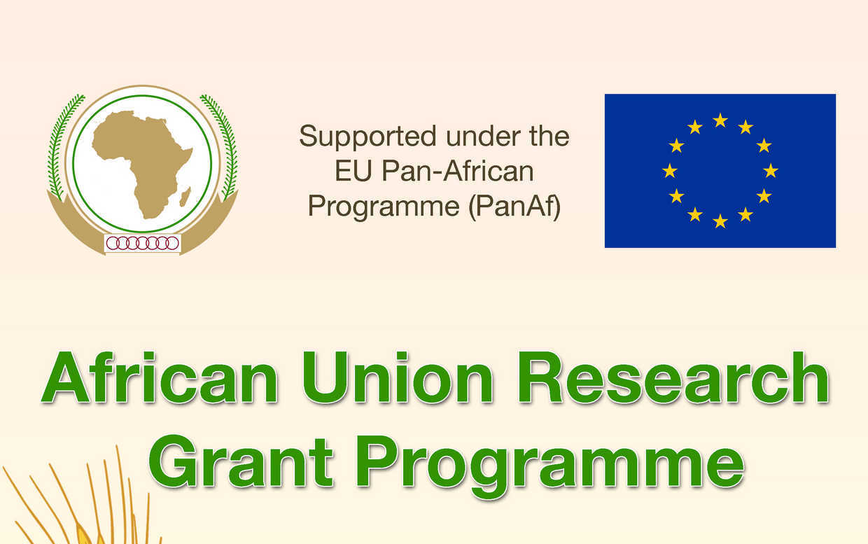 Call for Proposals: African Union Research Grant Programme 2018 for AU and EU Nationals