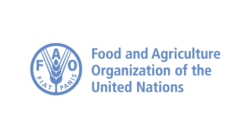 Food And Agriculture Organization Jobs In Nigeria