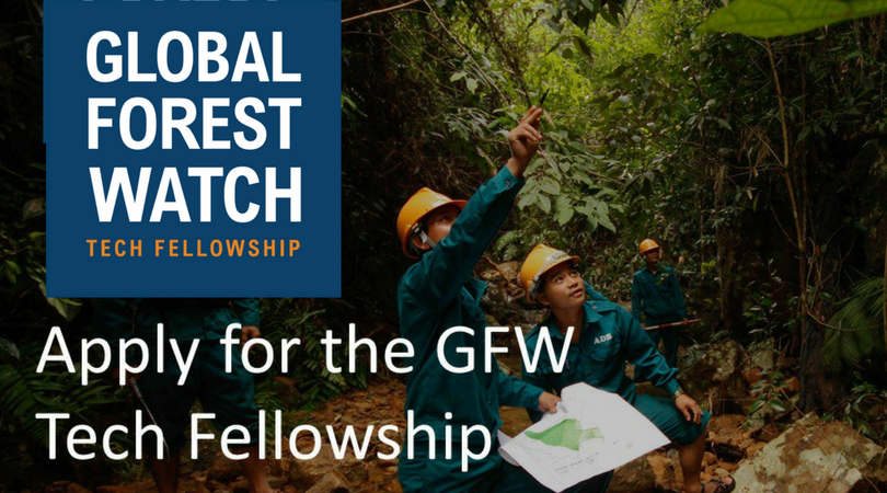 Global Forest Watch (GFW) Tech Fellowship 2018 (Fully-funded to Washington, D.C. + $6,000 Stipend)