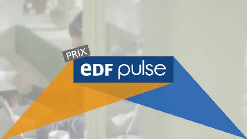 EDF Pulse Africa Awards 2018 for African Start-ups (€30,000 in prizes)