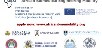 ABEM Biomedical Engineering Scholarships for African Postgraduate Students & Academics 2018/19 (3rd Round)