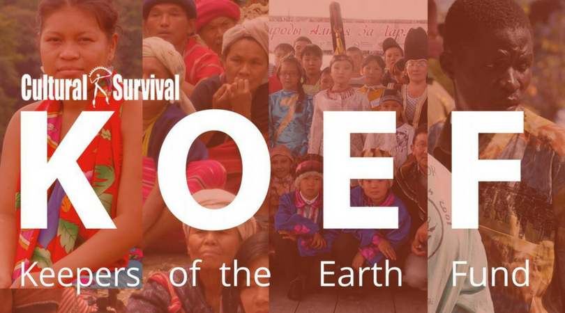 Cultural Survival's Keepers of the Earth Fund (KOEF): Call for Project Concepts 2018 (Up to $5,000)