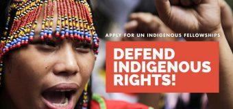 OHCHR Indigenous Fellowship – Training Programme 2019 (Fully-funded to Geneva)