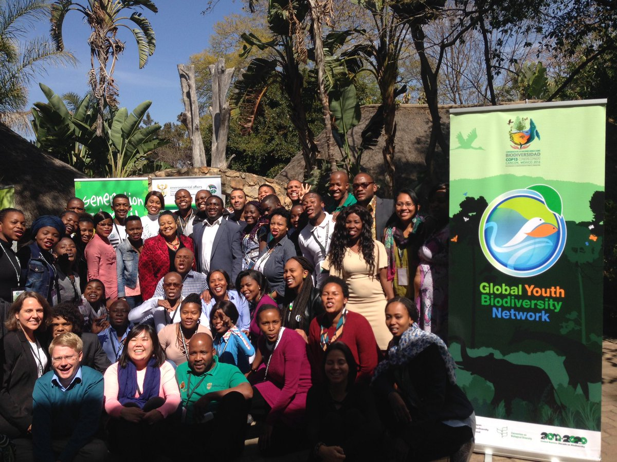 GYBN Regional Youth Capacity Building Workshop for Africa 2018 (Funded)