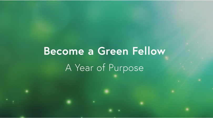 Green Campus Initiative's Green Fellowship 2019 (Monthly stipend available)
