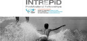 INTREPiD International Fellowship Programme 2018 for Young Researchers