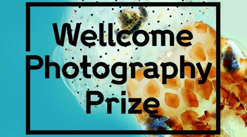 Wellcome Photography Prize 2019 (£20,000 in prizes)