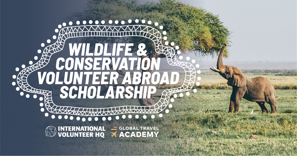 IVHQ's Wildlife & Conservation Volunteer Abroad Scholarship 2018/19