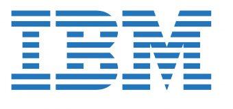 International Business Machine (IBM) PhD Fellowship Program 2019