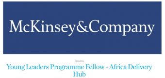 McKinsey&Company Young Leaders Programme for the Africa Delivery Hub in Addis Ababa