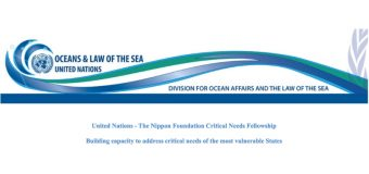 United Nations – The Nippon Foundation Sustainable Ocean Programme Critical Needs Fellowship (Funded)