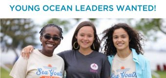 World Oceans Day Youth Advisory Council: Young Ocean Leaders Wanted!
