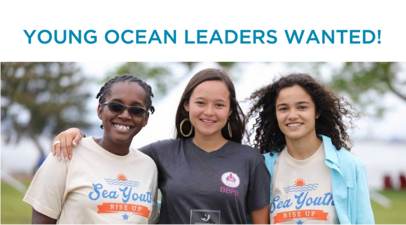 World Oceans Day Youth Advisory Council 2019: Young Ocean Leaders Wanted!