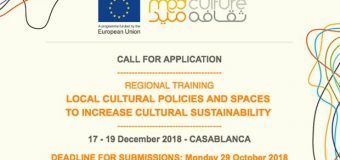 Med Culture Regional Training Workshop 2018 for South Mediterraneans (Fully-funded to Casablanca)