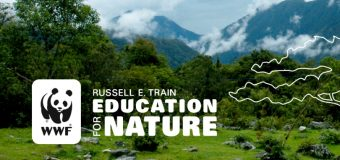 World Wildlife Fund (WWF) Russell E. Train Fellowships 2019 (Up to $30,000 funding per year)