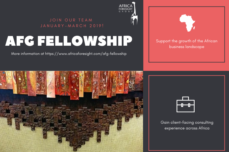 Africa Foresight Group Fellowship for Young Professionals 2019