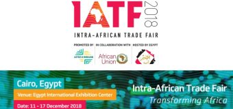 African Union Commission Sponsorship for Young Entrepreneurs to attend Inter-African Trade Fair 2018 in Cairo, Egypt