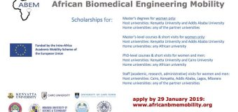ABEM Biomedical Engineering Scholarships for African Postgraduate Students & Academic Staff 2019/20