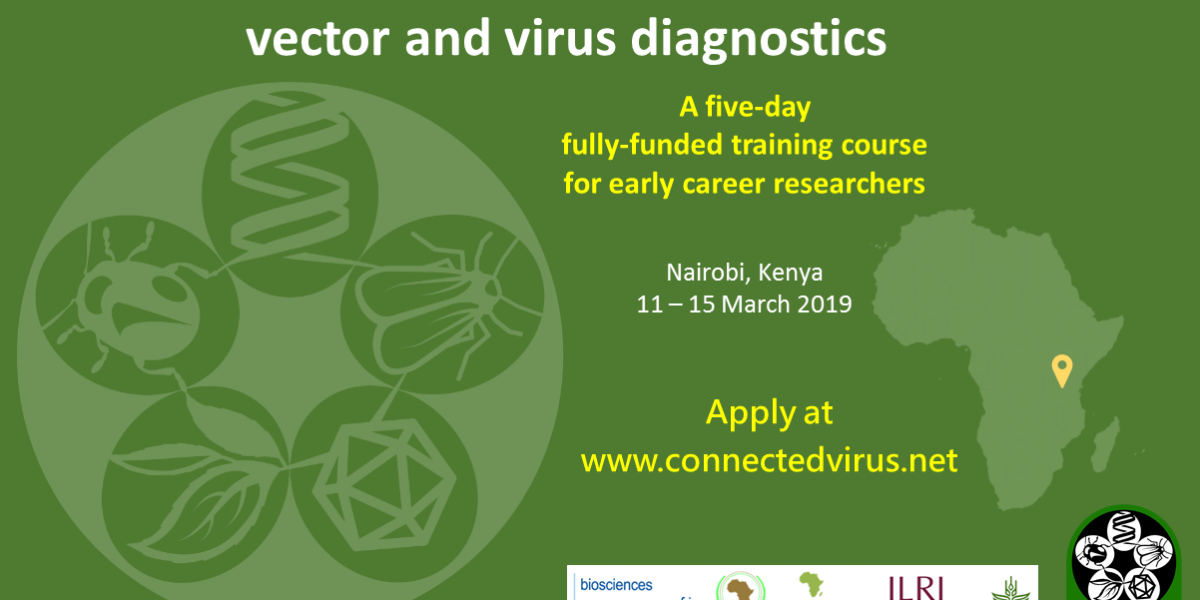 CONNECTED BecA-ILR Vector and Virus Diagnostics Course for Early Career Researchers 2019