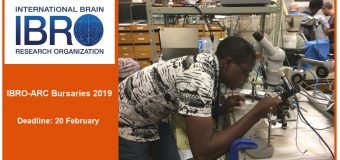IBRO African Regional Committee (IBRO-ARC) Bursaries 2019 (Up to €4,000)