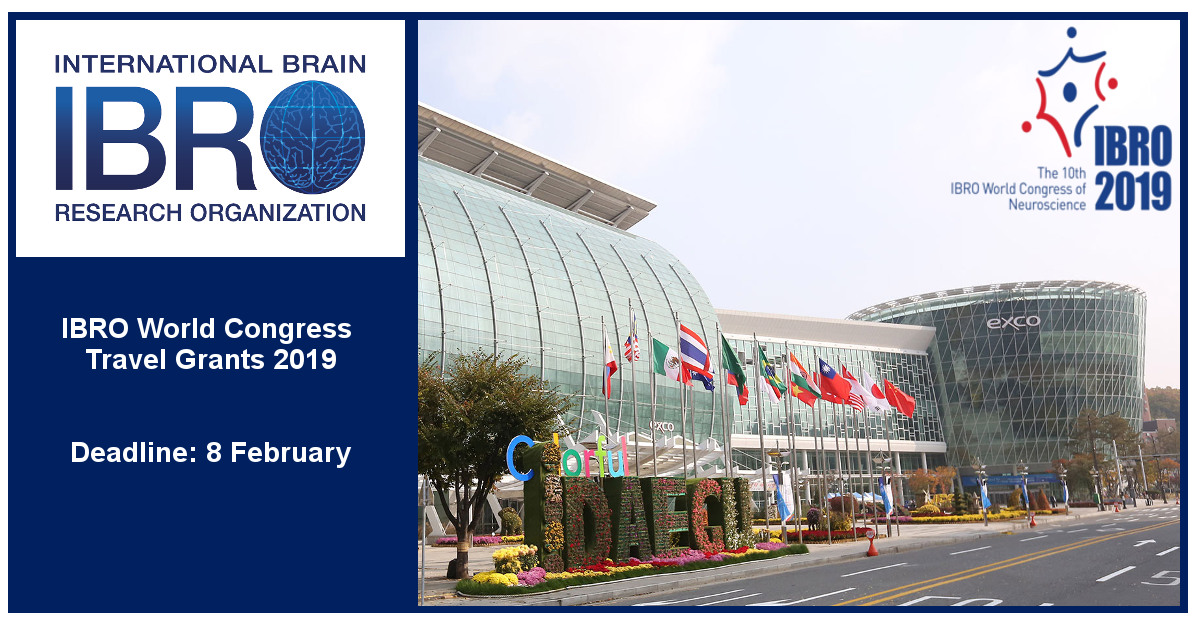 IBRO World Congress Travel Grants Program 2019 (Up to €2,000 Euros)