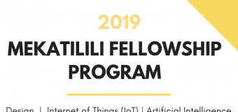 Mekatilili Fellowship Program 2019 for Innovative African Youth – Nairobi, Kenya (fully funded)