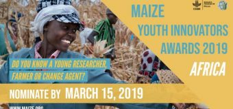 Call for Nominations: CGIAR MAIZE Youth Innovators Awards – Africa 2019