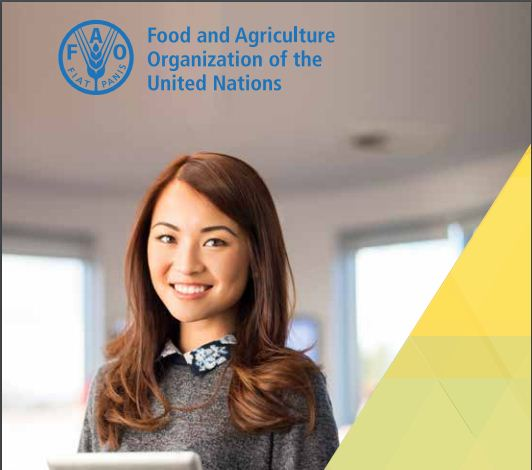 Food and Agriculture Organization of the United Nations (UN FAO) Internship Program 2019