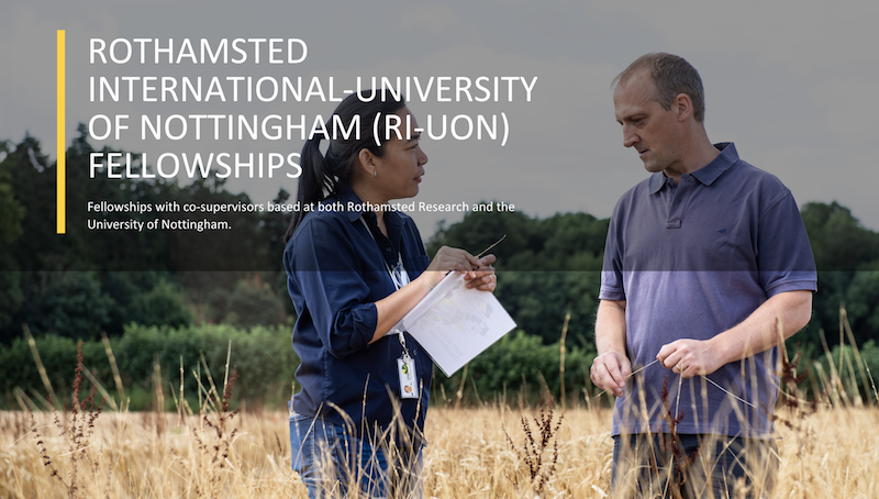 Rothamsted International – University of Nottingham Fellowship 2019 (Fully-funded to the UK)