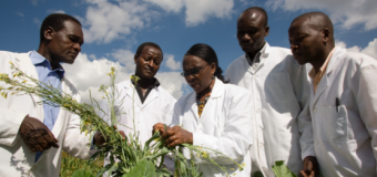 African Women in Agricultural Research and Development One Planet Fellowship 2019