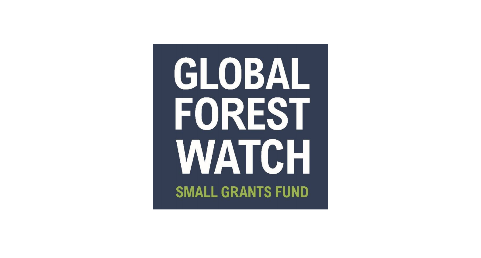 Global Forest Watch (GFW) Small Grants Fund 2019 for Organizations (Up to $40,000 USD)