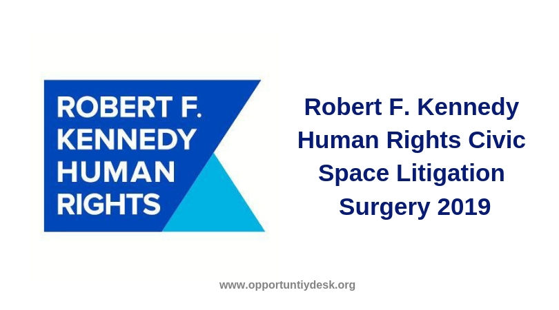 Robert F. Kennedy Human Rights Civic Space Litigation Surgery 2019 (Fully-funded)