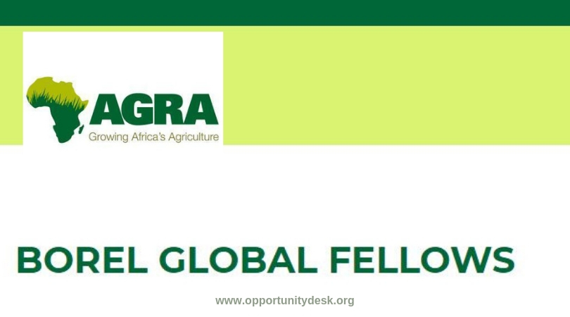 AGRA Borel Global Fellowship Programme 2019 for Masters Study at University of Delaware