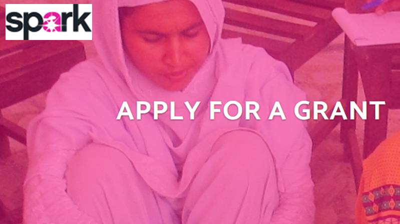 Spark Seed and Early-stage Grants 2019 for Women's Organisations and Initiatives (Up to $5,000)