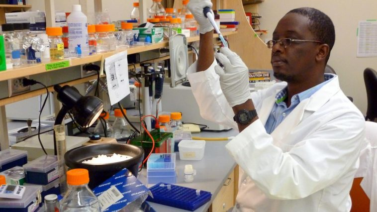 TEG Postgraduate Training Fellowship in Medical Statistics for African Scientists 2019