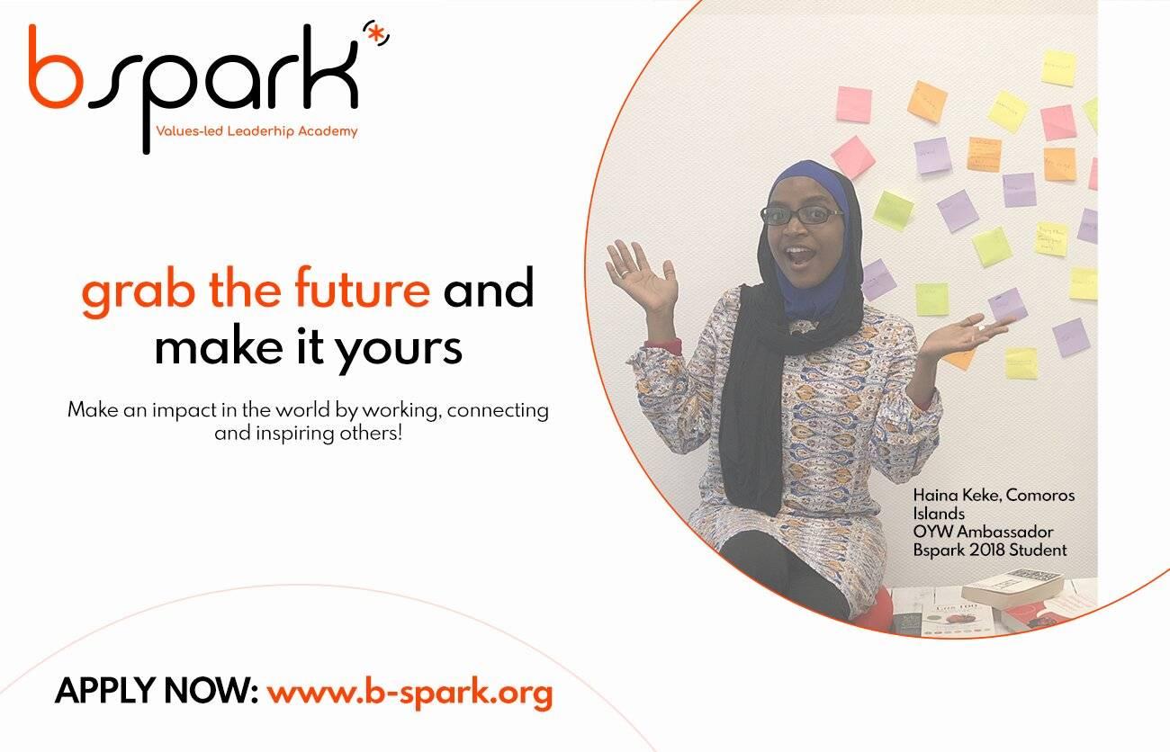 Bspark Values Led Leadership Academy Fellowship 2019