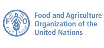 Food and Agriculture Organization of the United Nations (FAO) HQ Internship Programme 2019