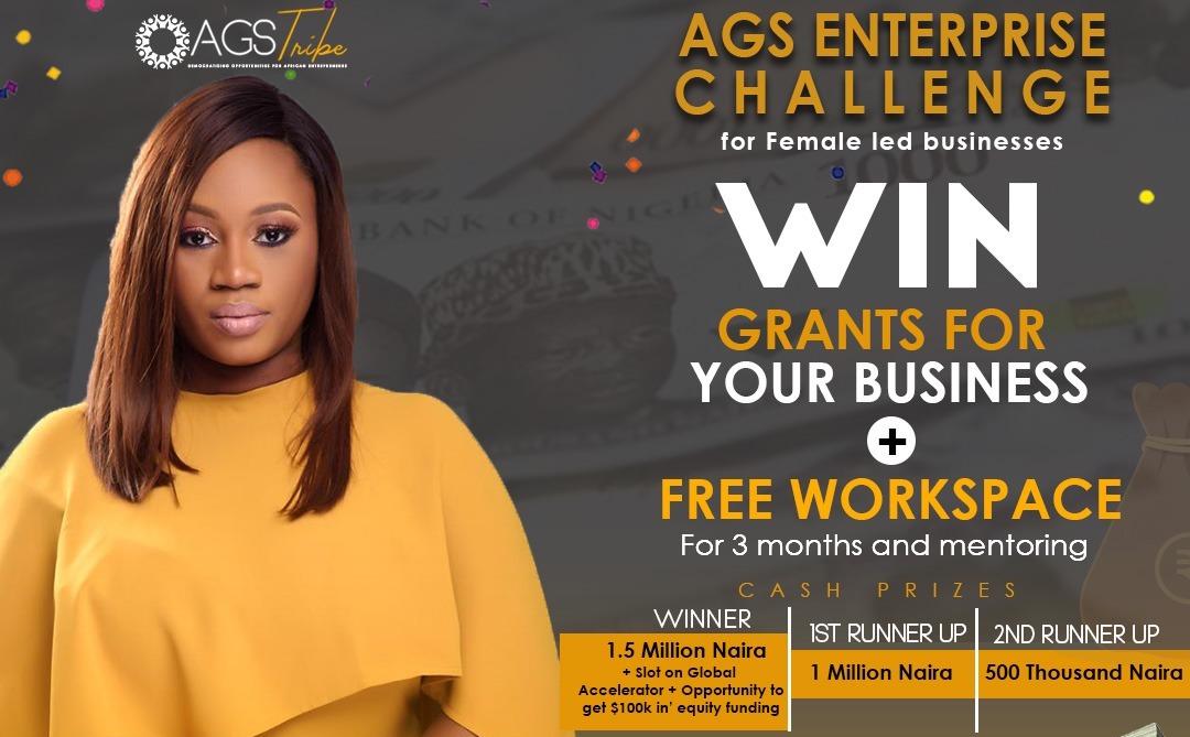 AGS Enterprise Challenge 2019 for female-led enterprises in Nigeria (N3,000,000 in prizes)