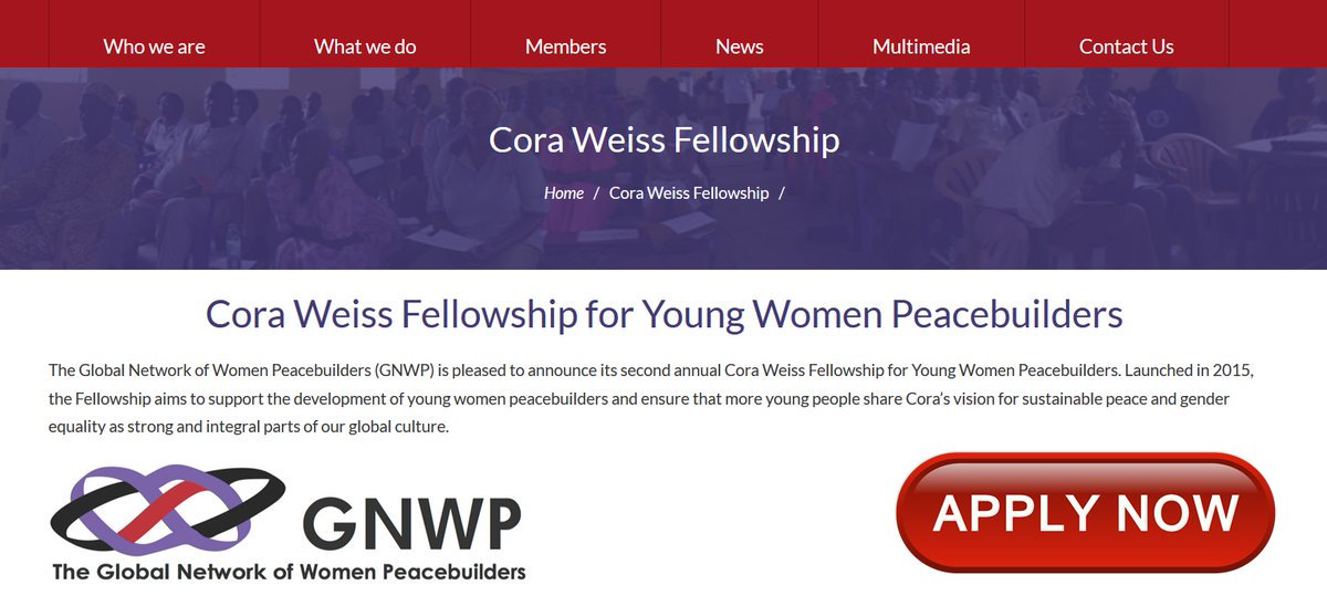 Cora Weiss Fellowship for Young Women Peacebuilders 2019 (Fully-funded to New York)