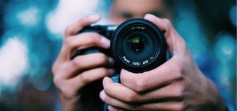 Nikon International Small World Competition 2020 for Photomicrographers