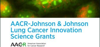 AACR-Johnson & Johnson Lung Cancer Innovation Science Grants 2019 (Up to $1,000,000)