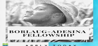 Borlaug-Adesina Fellowship Program 2019 for Young Africans