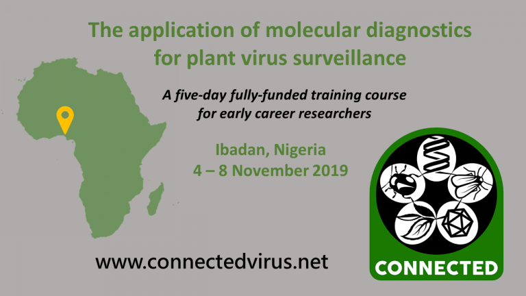 CONNECTED/IITA Vector and Virus Diagnostics Training Course 2019 for Early Career Researchers