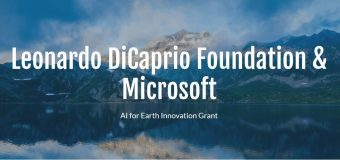 Leonardo DiCaprio Foundation/Microsoft AI for Earth Innovation Grant 2019 (Up to $100,000)