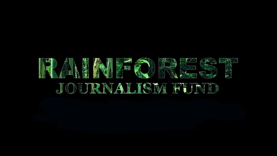 Pulitzer Center Rainforest Journalism Fund 2019 (Up to $7,500)