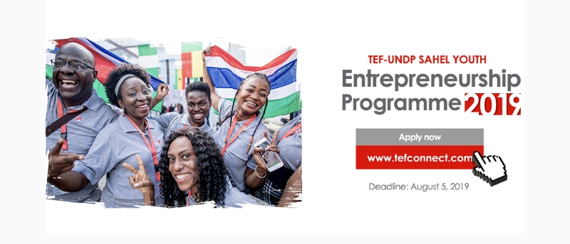 TEF-UNDP Sahel Youth Entrepreneurship Programme 2019 (Seed Funding available)