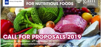 Call for Proposals: GAIN's Marketplace for Nutritious Foods Innovation Accelerator Programme 2019